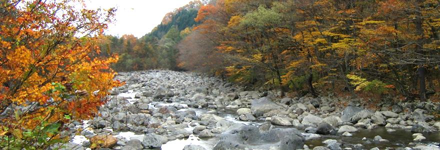 目の前を流れる川
